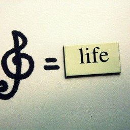 photography musicquotes life musicalnote music
