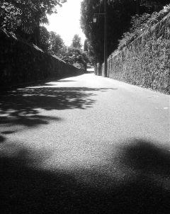 sun black & white