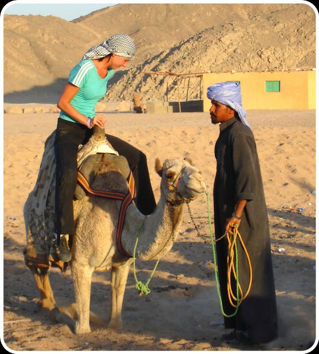 Египет. В пустыне на верблюде.
