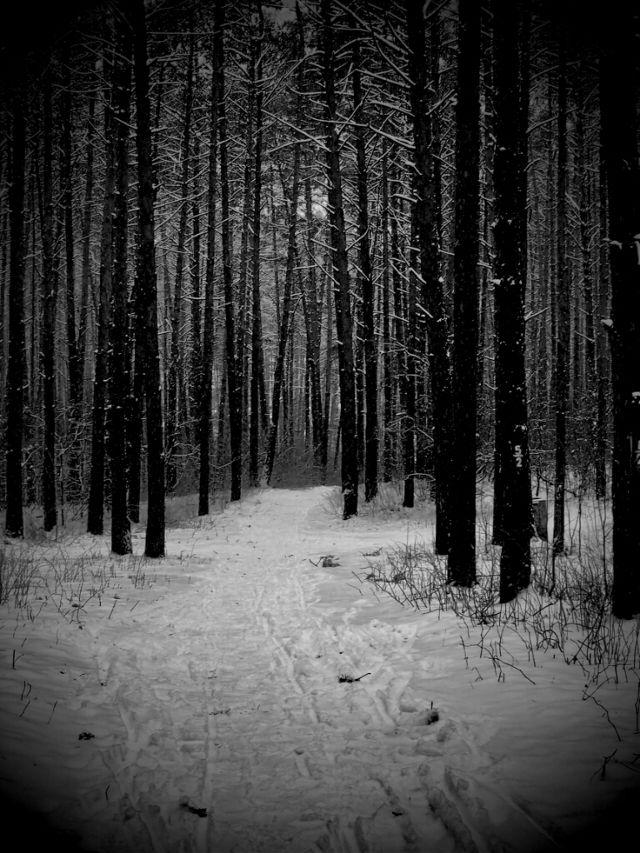 black and white photo art by PicsArtist Flestitac