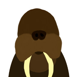 drawing challenge edit challenge walrus
