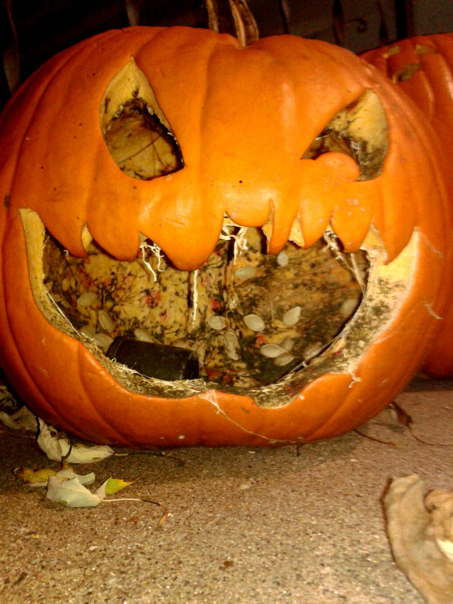 really? you still got pumpkins on the porch?