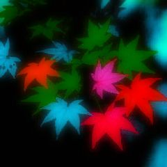 colorful emotions nature popart flower retro